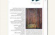 فصلنامه «نقد کتاب هنر» در پله پانزدهم