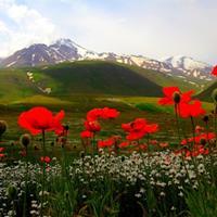 تنوع گردشگری طبیعی و تاریخی اردبیل پاسخگوی تمام سلیقههاست