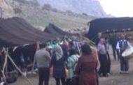 منطقه ویژه گردشگری در کانونهای عشایر ایلام ایجاد میشود