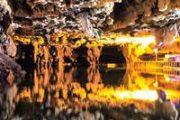 ثبت ۱۱ درخت کهنسال و تصویب حریم غار علیصدر