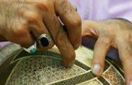 خاتمساز شیرازی جوانترین دارنده نشان درجه هنری در کشور