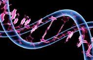 تیر خلاص علم ژنتیک برای ما معمولیها
