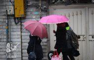 رشت شهر چترهای رنگی