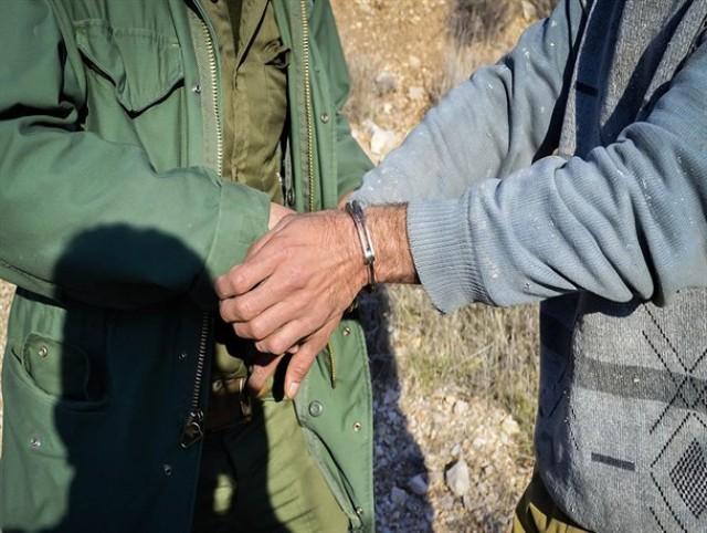 دستگیری شکارچیان ۶۵ قطعه پرنده وحشی