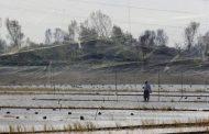دستگیری متخلفان صید و شکار در مازندران