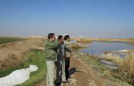 پایش زیستگاهها و برکههای آبی در قزوین