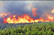 هشدار اداره کل حفاظت محیط زیست استان قزوین نسبت به آتش سوزی در مراتع