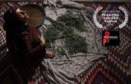 حضور فیلم کوتاه فروزان در یک جشنواره هندی
