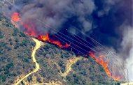 آتشسوزی جنگلها در ایام نوروز طی ۱۰ سال گذشته بیسابقه بوده است