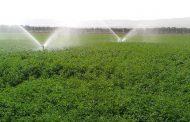 رفع بحران آب با مدیریت صحیح کشاورزی