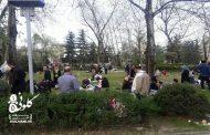بوستان ملت رشت، پاتوق دوستداران محیط زیست