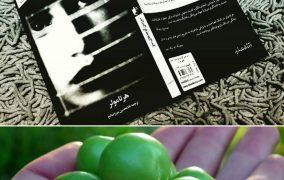 سرزمین گوجههای سبز اثر هرتا مولر