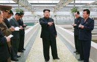 مشکل کره شمالی تندرستی است