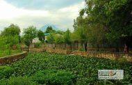 سراب نیلوفر خرمآباد میتواند مقصد گردشگری شود