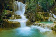 جنگل نای انگیز خرم آباد در خطر نابودی است