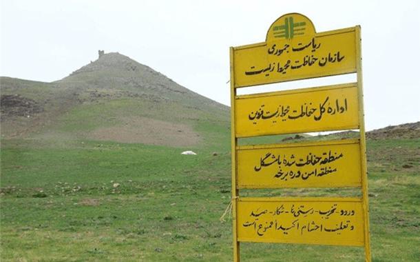 خروج  ۱۳۳۰ راس دام اهلی غیرمجاز از مراتع حفاظت شده باشگل