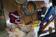 دستگیری شکارچی کبک در ارتفاعات ساربانک