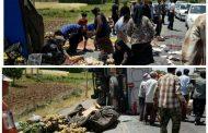 مردم نورآباد لرستان شهره ایران شدند