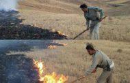 مهار آتش سوزی در مراتع روستای علنقیه