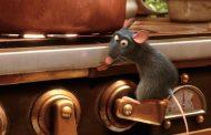 حضور موش در بیمارستان شهید فقیهی شیراز تایید شد