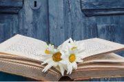 کتابخوانی به رشد ذهنی بچهها کمک میکند