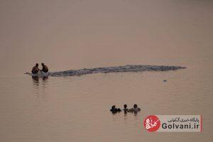دریاچه ارومیه در بی آبی