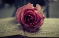 نامه به نویسنده و مترجم کتابی که دوستش دارید