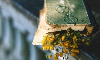 آدمها را میتوان از روی کتابی که میخوانند قضاوت کرد