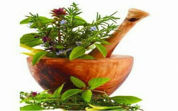 طب سنتی در گیلان