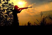 آیا شکار حیوانات ابزاری برای کنترل جمعیت است؟