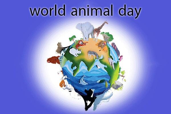 روزی که با هدف بهتر کردن زندگی حیوانات
