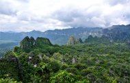 قدیمی ترین نقوش صخره ای بشر در اندونزی  کشف شد