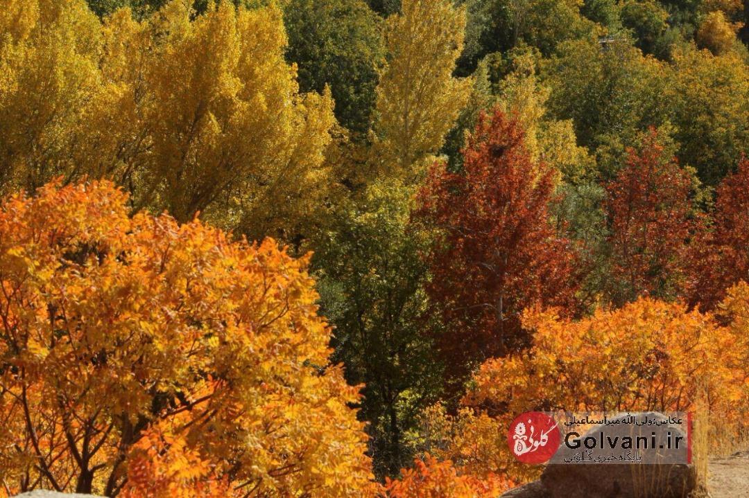 عکسهایی زیبا از طبیعت پاییز