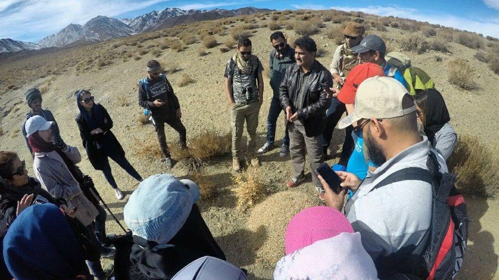 قرار سبز در منطقه لاله زار بردسیر استان کرمان