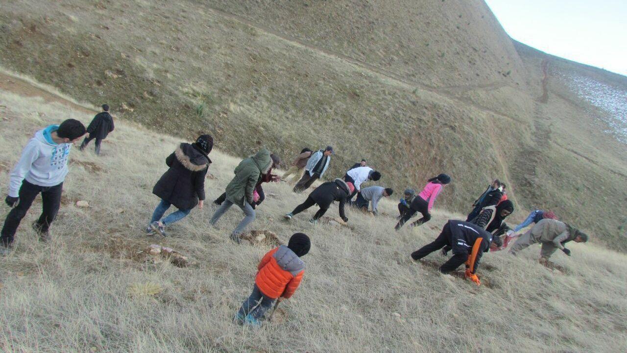 قرارسبز در شهر سنندج استان کردستان
