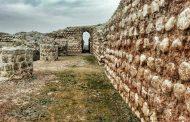 گردشگرها مثل مور و ملخ از دیوار کاخ خسرو پرویز بالا رفتند تا عکس بگیرند +تصویر