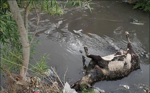 آلودگی آب ناشی از کشاورزی چه زمانی پدید میآید و در برابرش چه باید کرد؟