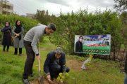 قرار سبز رسانه ای حامیان طبیعت و گروههای محیط زیستی در هفته پایانی بهمن ماه ۱۳۹۷