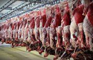 گوشت سرطان میآورد قبول ولی نخوردنش هم باعث بیکاری میشود