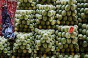 تولید هندوانه در ایران و صادرات آن به ۲۹ کشوری که شاید بیشتر از ما آب دارند
