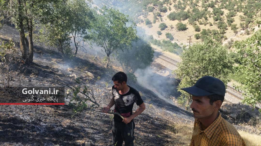 آتش سوزی در سپیددشت لرستان