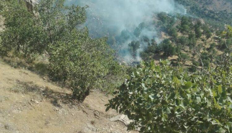 گزارش تصویری از اطفای حریق در منطقه گت پهلوان
