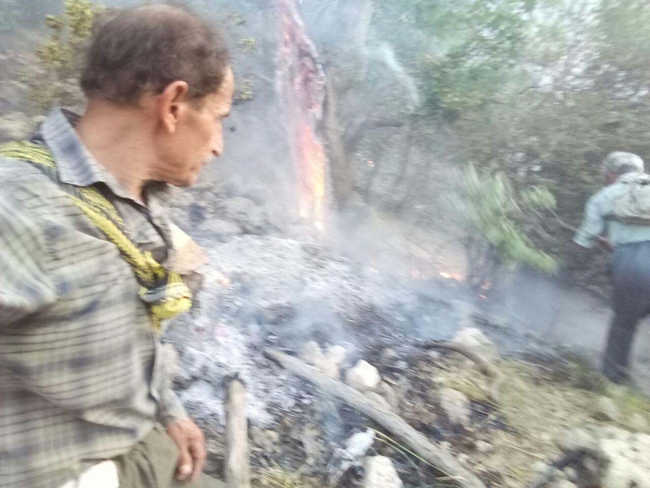 آتش سوزی در منطقه گت پهلوان و گزارش تصویری از اطفای حریق