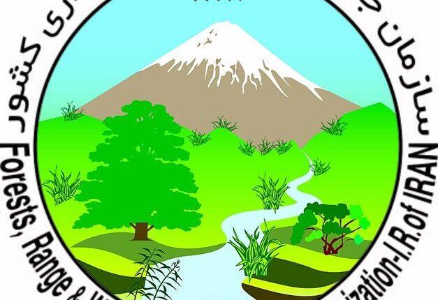 بیانیه سازمان جنگل ها