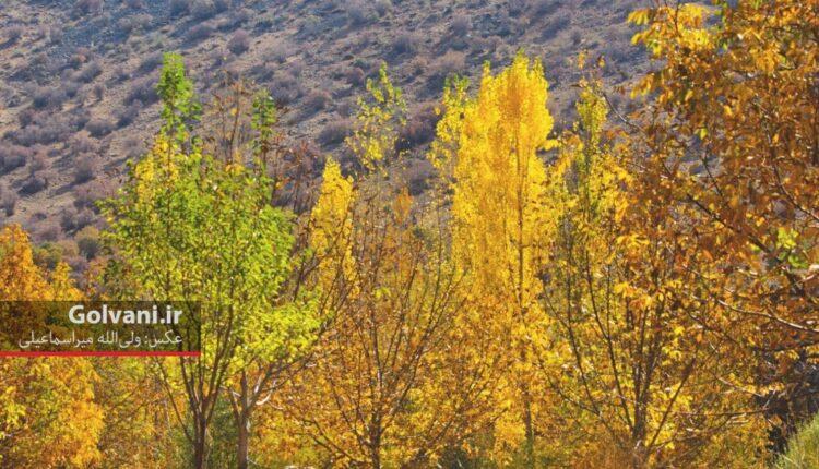 پاییز فصل عکس و عکاسی