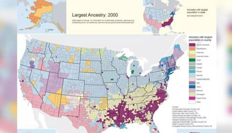 تبار غالب در آمریکا چیست؟