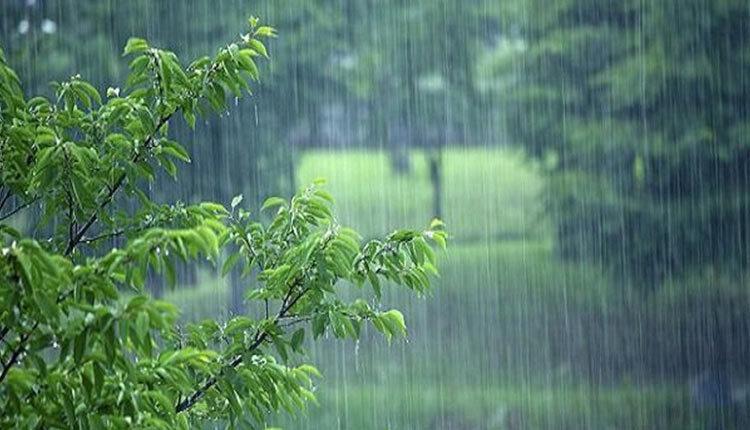 بارش باران در استان های شمالی کشور در هفته دوم نوروز