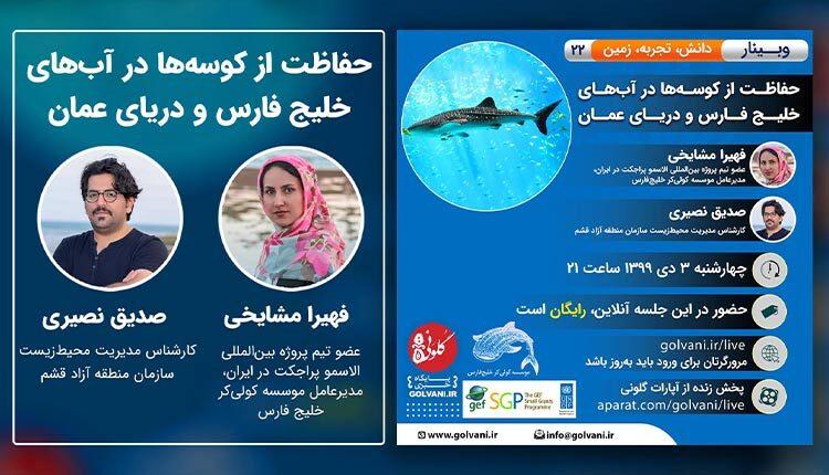 حفاظت از کوسه در خلیج فارس و دریای عمان