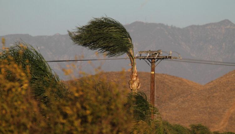 افزایش شدت وزش باد برای جمعه و شنبه پیش بینی میشود