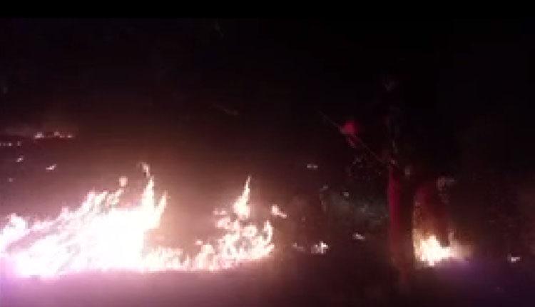 مهار آتش سوزی جنگل های زاگرس در کهگیلویه و بویراحمد